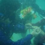 Cérémonie de mariage sous-marine à Nha Trang Festival de la mer 2011
